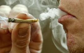 conoce-a-los-4-mexicanos-a-quienes-la-scjn-permitio-el-uso-recreativo-de-marihuana