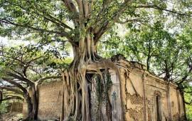 el-inah-sumara-15-monumentos-historicos-a-catalogo-en-nayarit