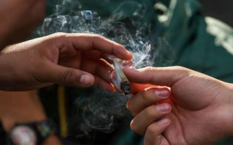 cofepris-emite-autorizaciones-para-consumo-ludico-de-mariguana