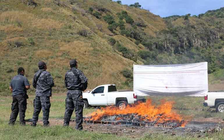 incinero-pgr-mas-de-161-kilos-de-narcoticos-en-nayarit
