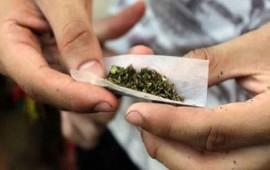 cofepris-no-dara-autorizaciones-para-uso-ludico-de-mariguana