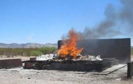 destruye-pgr-120-toneladas-de-droga-en-la-yesca