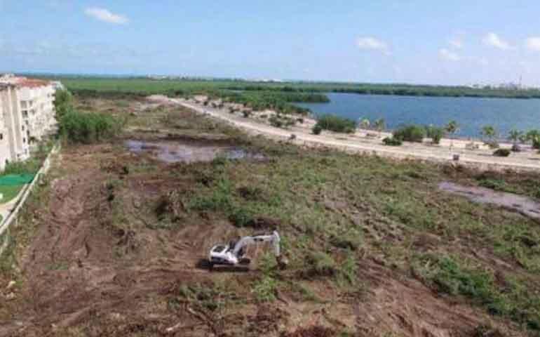 destruyen-manglar-en-cancun-para-construir-plazas-comerciales