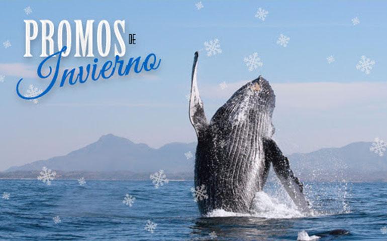 llegaron-las-promociones-de-invierno-a-riviera-nayarit
