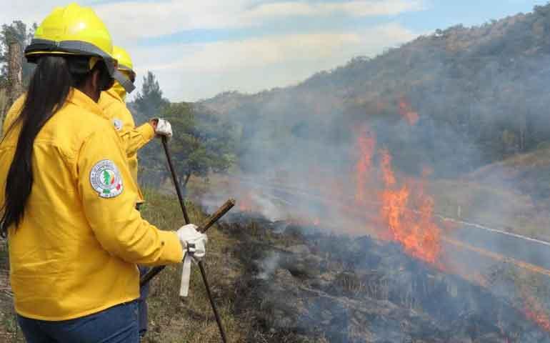 se-registraron-2-incendios-forestales-en-enero