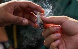 suman-183-solicitudes-recibidas-para-uso-ludico-de-mariguana