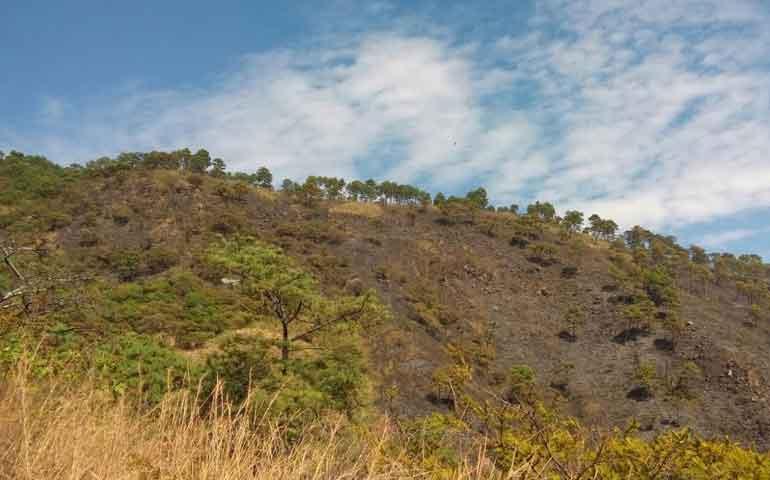 compensan-danos-provocados-por-incendio-en-el-cerro-de-san-juan