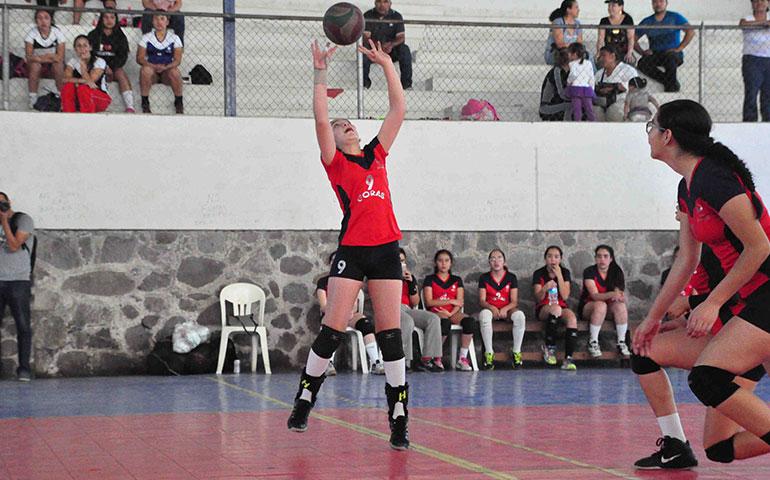 en-voleibol-de-sala-dominantes