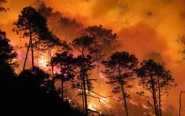 liquidado-el-incendio-en-el-cerro-de-san-juan