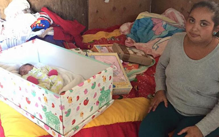 regalaran-cunas-de-carton-a-familias-de-escasos-recursos