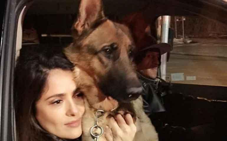 salma-hayek-pide-a-la-justicia-resuelvan-asesinato-de-mascota