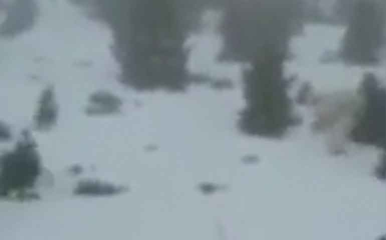 video-descubren-que-hombre-de-las-nieves-sale-a-caminar-por-montanas-de-espana