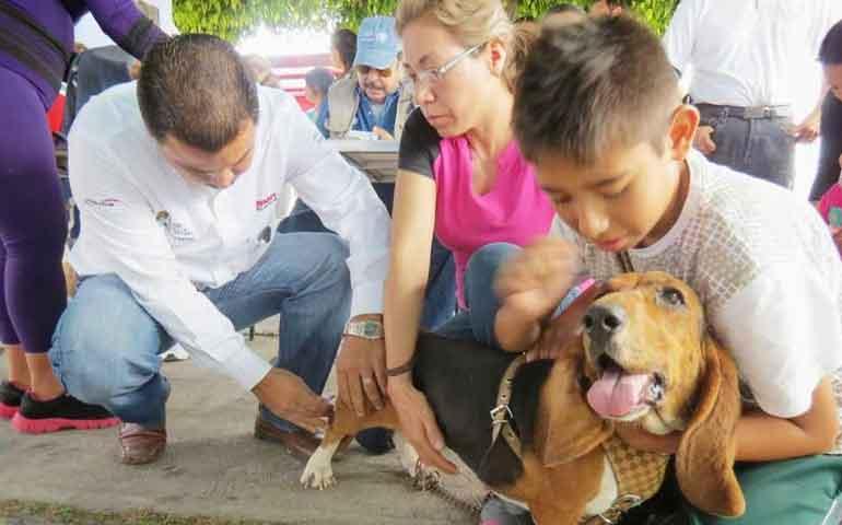 convoca-a-vacunar-a-perros-y-gatos-contra-la-rabia