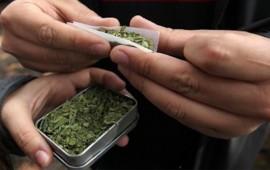 jalisco-a-favor-de-despenalizar-el-uso-de-la-marihuana-aristoteles
