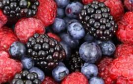 5-alimentos-que-ayudan-a-prevenir-y-combatir-el-cancer