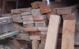 aseguran-madera-y-clausuran-centro-de-almacenamiento-en-tepic