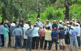 nayarit-primer-lugar-en-produccion-de-tabaco