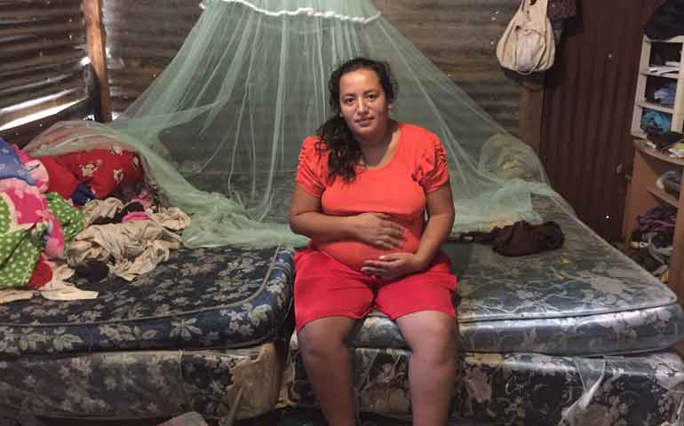 reporta-la-ssa-201-casos-de-zika-en-el-pais