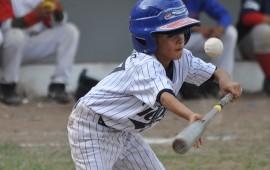 total-apoyo-al-beisbol