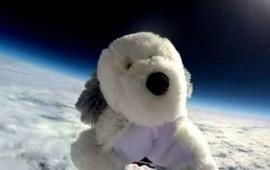 video-buscando-a-sam-el-perrito-de-peluche-que-salio-al-espacio-para-ver-la-tierra