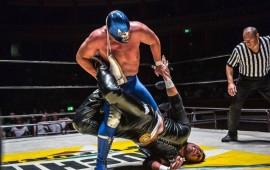 blue-demon-jr-la-sorpresa-azul-del-mundial-de-lucha-libre
