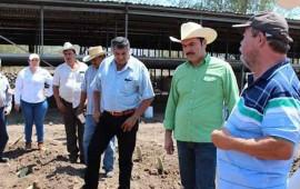 capacita-la-conafor-a-beneficiarios-sobre-cultivos-agroforestales