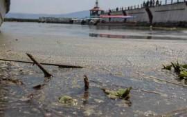 comunidad-de-jalisco-envenenada-por-el-agua