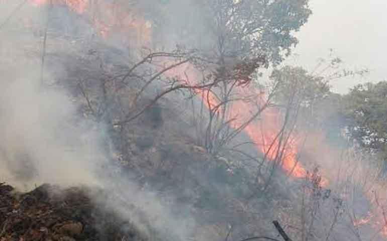incendio-en-cerro-de-san-juan-afecta-55-hectareas