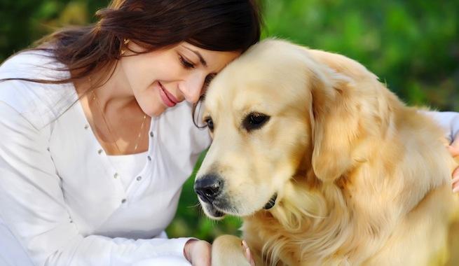 Los-perros-se-acercan-a-consolarnos-si-nos-ven-tristes