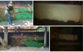 culpan-a-layin-de-borrar-mural-de-pintor-nayarita