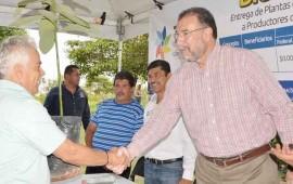 entrega-polo-plantas-de-aguacate-y-guanabana-a-productores