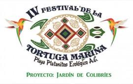 se-realizara-el-iv-festival-de-la-tortuga-marina-en-playa-platanitos