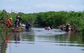 invierte-la-conafor-360-mil-pesos-para-el-saneamiento-de-manglares-en-rosamorada