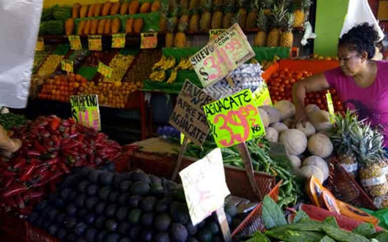 precio-del-aguacate-sigue-a-la-baja-se-vende-en-42-pesos