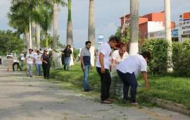 realizan-limpieza-en-avenidas-de-bahia-de-banderas