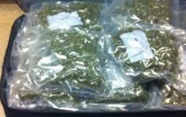 asegura-pgr-mas-de-16-kilos-de-marihuana-en-ixtlan-del-rio