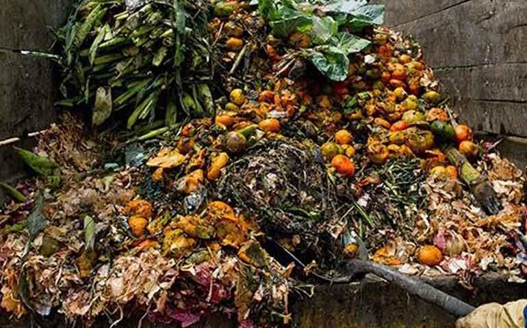 busca-rescatar-alimentos-desechados-por-los-mercados-de-abastos