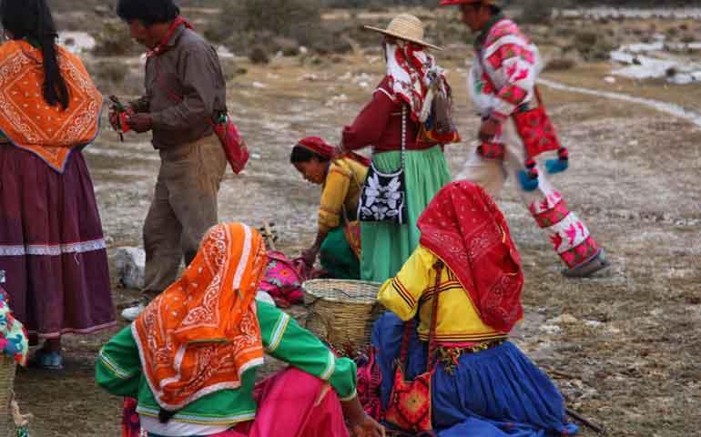 denuncian-casos-de-compra-venta-de-ninos-indigenas-en-el-nayar