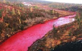 el-rio-tenido-de-rojo-sangre-que-ha-conmocionado-a-rusia1