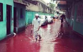 rios-de-sangre-en-bangladesh-por-festival-de-sacrificios-de-animales