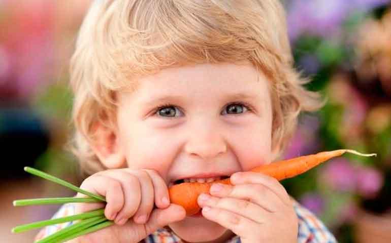 los-ninos-pueden-ser-vegetarianos1los-ninos-pueden-ser-vegetarianos1