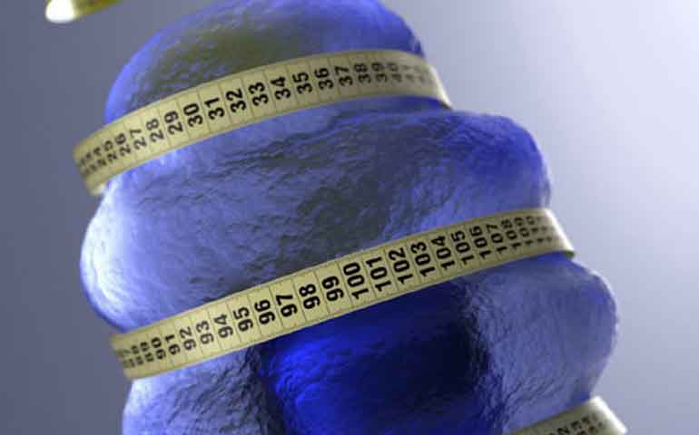 la-herencia-genetica-influye-para-tener-sobrepeso
