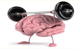 el-ejercicio-fisico-mejora-la-inteligencia-y-la-actividad-cerebral