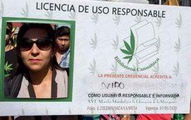 exhortan-a-diputados-a-avalar-uso-medicinal-de-mariguana