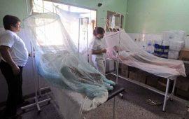 nayarit-inicia-el-ano-fuera-de-los-casos-de-mayor-indice-de-piquete-de-mosquito