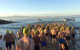 torneo-de-nado-en-aguas-abiertas-riviera-nayarit-ingresa-a-la-serie-mundial-de-nado