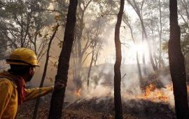 atienden-incendio-en-cerro-de-san-juan-duro-mas-de-24-horas-el-siniestro