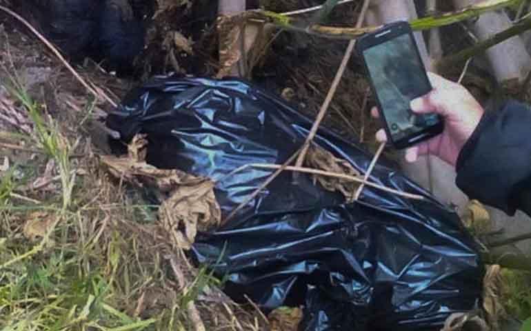 hallan-restos-humanos-dentro-de-7-bolsas-negras-en-guerrero