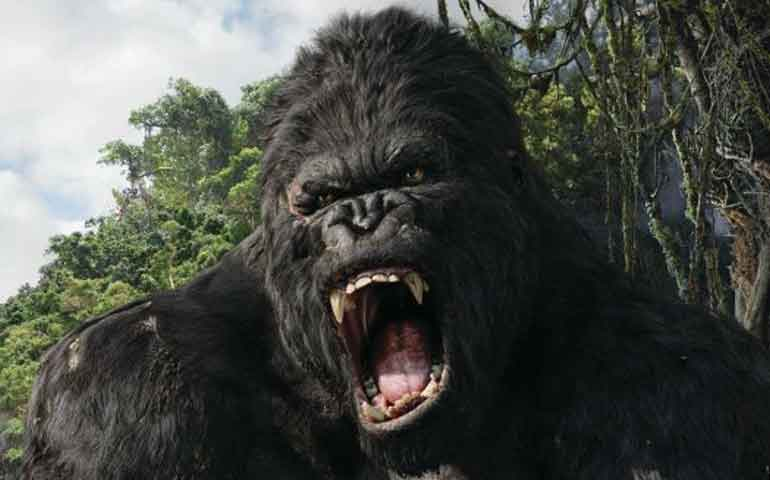 """King-Kong""-tendrá-su-propia-serie-de-TV-"