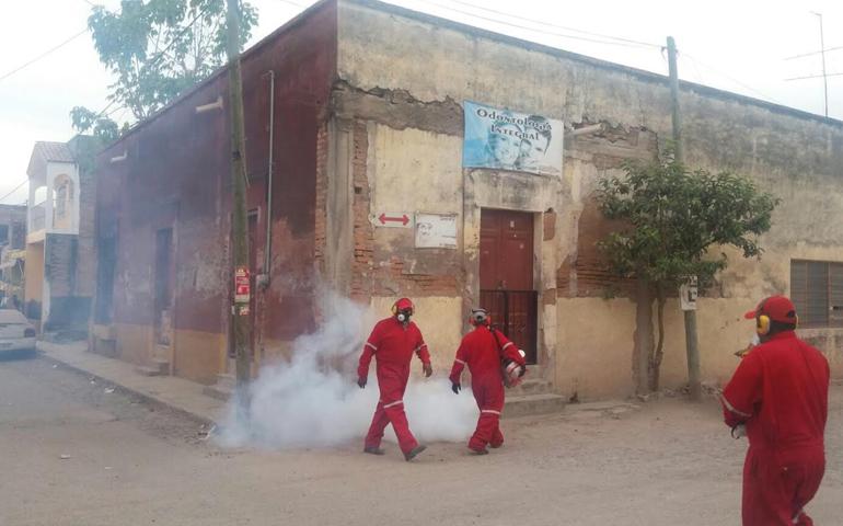 disminuyen-en-un-71-los-casos-de-dengue-en-nayarit